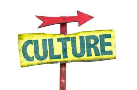 Culture Segment